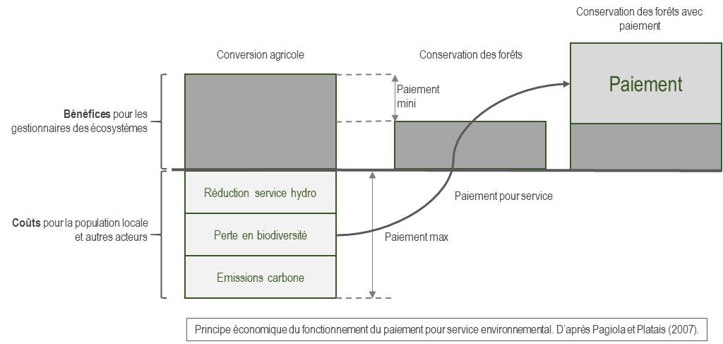 Meral et D. Pesche dans Services Ecosystémiques détaillent l'exemple du paiement de Vittel. De manière volontaire, Vittel (filiale de Nestlé) rémunère des agriculteurs (fournisseurs de services environnementaux) afin qu'ils «adoptent de bonnes pratiques pour améliorer la qualité de l'eau des bassins versants où Vittel puise son eau minérale».