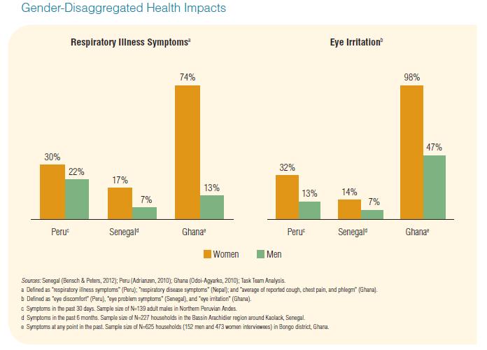 Figure 5: Gender-Disaggregated Health Impacts. Source: Putti et al. (2015)